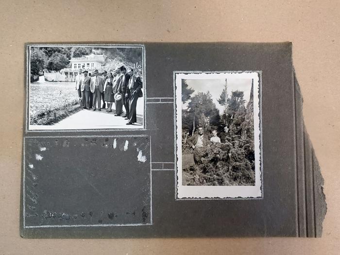 Сканиране на снимки от албум